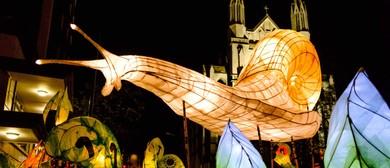Dunedin Midwinter Carnival 2019