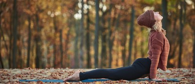 Hatha Yoga Classes With Sue Ransom In the School Holidays
