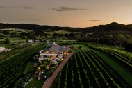 Image for event: Auckland Wine Week - Waiheke Wine Day Out