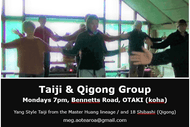 Taiji and Qigong Classes
