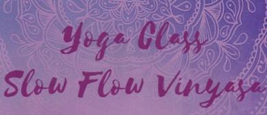 Vinyasa Yoga with Mariana