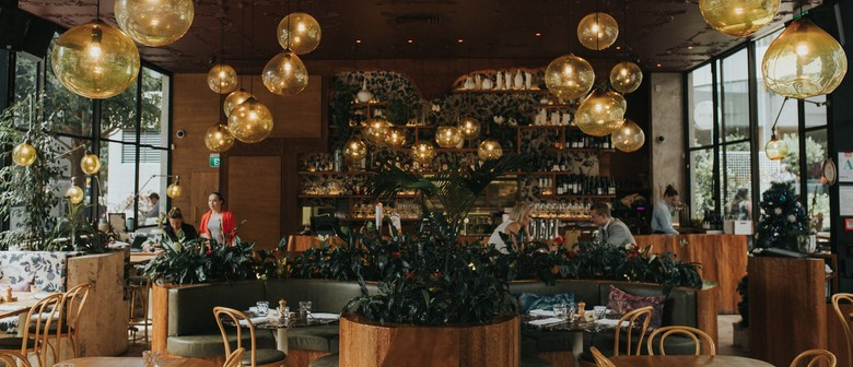 Dine with Dish: Wither Hills' 25th Anniversary