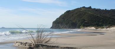 Waihi Beach Art & Craft Fair