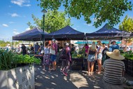 Image for event: The Howick Village Market