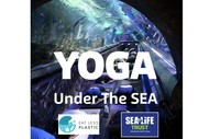 Image for event: Yoga Under the Sea