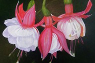 Linda Rawlings - Recent Work in Oils