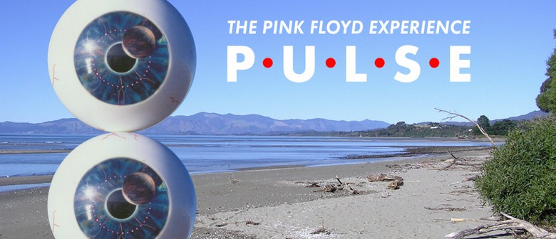 The Pink Floyd Experience Pulse 2011 Tour