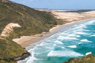 Oceania Ecosystem Services Forum