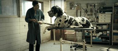 Italian Film Festival - Dogman
