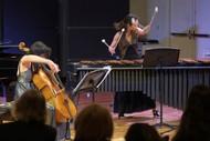 Image for event: Warkworth Music: Duo Col Legno