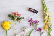 Image for event: Emotional Healing With Essential Oils
