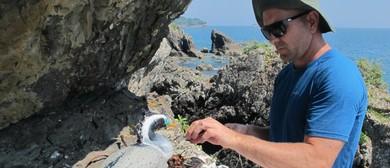 Forest & Bird - Hauraki Gulf Seabirds In a Changing World