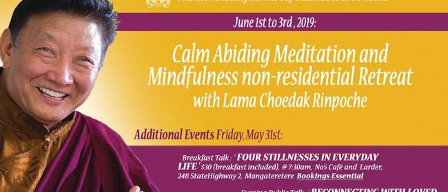 Calm Abiding Meditation Retreat