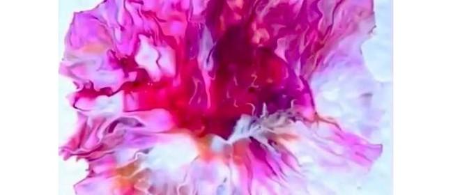 Learn to Acrylic Pour (Dutch Pour/Flower Technique)