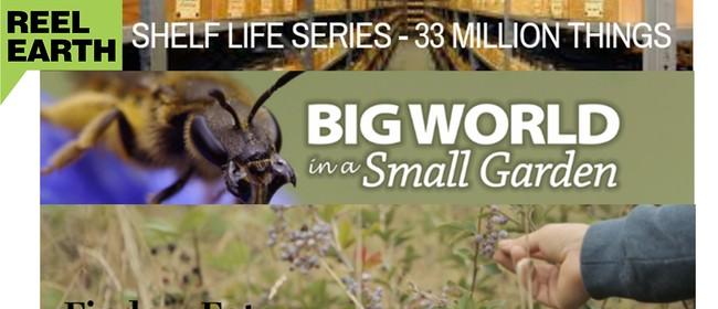 Reel Earth: 33 Million Things, Finders Eaters, Big World