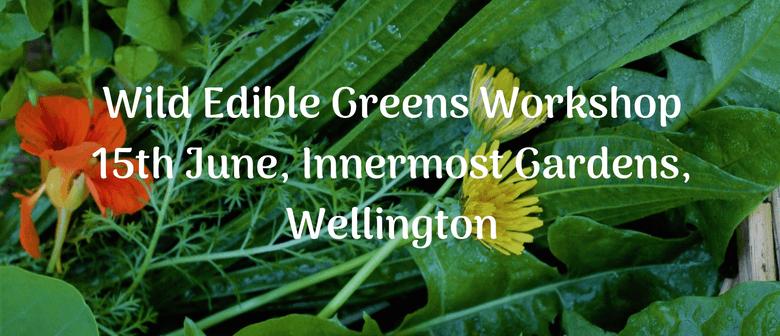 Wild Edible Greens Workshop