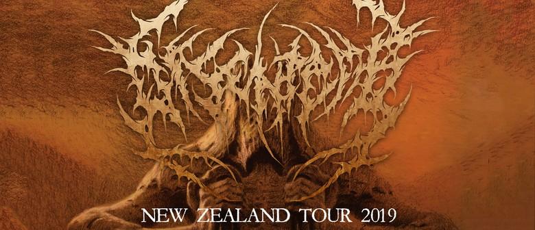 Disentomb New Zealand Tour - Wellington