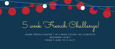 Semi Intensive French Beginners Class