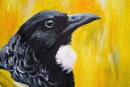 Image for event: Paint and Wine Night - Kowhai Tui - Paintvine