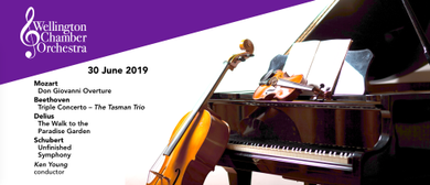 Wellington Chamber Orchestra (WCO)