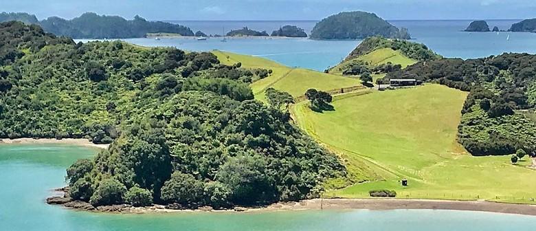 Paroa Bay Surprise - vineyard walk - Walk 3