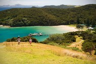Image for event: Urupukapuka Island - Walk 6