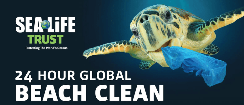 24-Hour Global Beach Clean