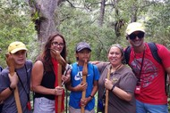 Image for event: Opua Forest Papatuanuku Earth Mother Tour - Short Walk 11A