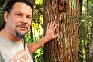 Image for event: MEG Winter Lecture - Northland Forests