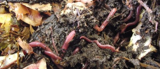 Worm Farm Workshop
