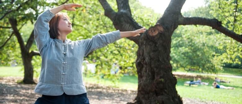 Body&Brain Yoga