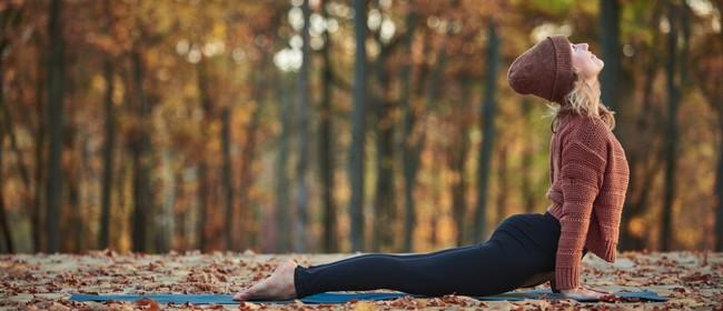 Hatha Yoga Classes with Sue Ransom