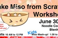 Make Miso from Scratch Workshop