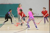 Primary School Floorball (Indoor Hockey)