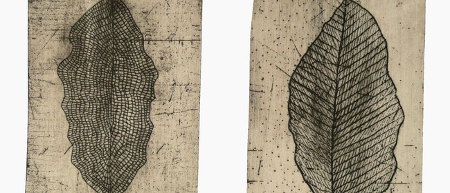 One Day Practical Etching Workshop with Kathy Boyle