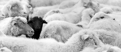 Black Sheep: A Cult Gathering