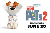 Image for event: The Secret Life of Pets 2