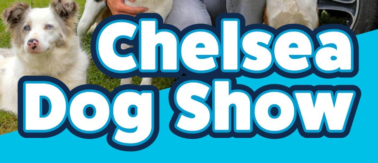 Chelsea Dog Show