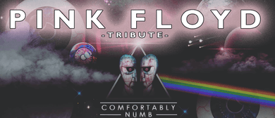 Pink Floyd Tribute (Comfortably Numb)