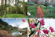 Image for event: Photography Exhibition: Seasons of the Arboretum