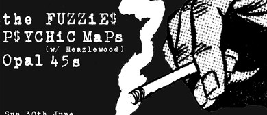 Psychic Maps & The Fuzzies on Tour