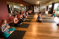 Image for event: Koha Yoga