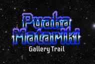 Image for event: Puaka Matariki Gallery Trail