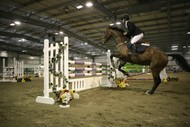 Image for event: Feilding IA & P Show Jumping
