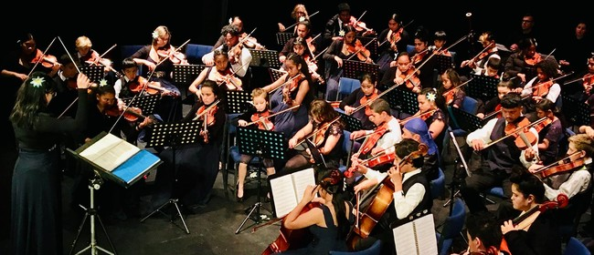 Virtuoso Strings Orchestra Bay of Islands Tour