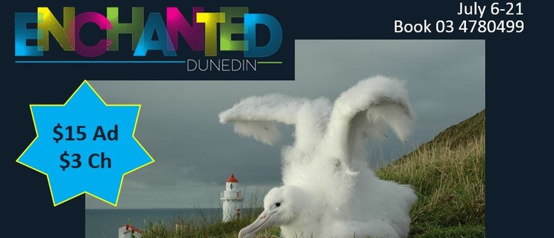 Enchanted Albatross Express for School Hols