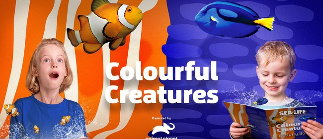 Colourful Creatures Challenge