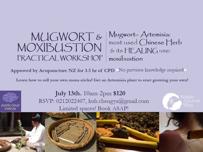 Mugwort (Most Used Chinese Herb) & Healing - Auckland - Eventfinda