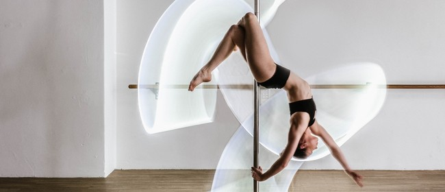 Lunch Time Pole Classes