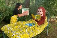 Image for event: Fairtrade Fortnight Banana Bananza